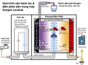 Quy-trình-lọc-nước-ủa-máy-lọc-nước-Kangen-JRII